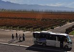 South America - Argentina: Mendoza Hop-On Hop-Off Wine Tour