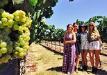 Private Full-Day Tour to Sonoma and Napa Wine Country From San Francisco