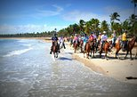 Small-Group Half-Day Horseback Riding Tour from Punta Cana