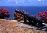 Tobago Island Sightseeing and Plantation Tour