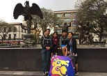 Mexico City Layover Tour: Downtown City Sightseeing, Ciudad de Mexico, MEXICO