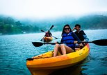 Sonoma Redwoods Hike and Coastal Kayaking Tour