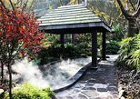 Chongqing Private Day Tour of Ciqikou Old Town and Ronghui Hot Springs Including Lunch