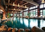 Chengdu Private Tour of Dujiangyan Panda Base and Qingcheng Hot Springs, Including Lunch