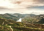 Full-Day Douro Valley Wine and Food Tour from Porto