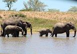 3 Days Kruger National Park Overnight Safaris