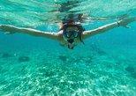 Curacao Snorkel Adventure