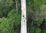 Full Day Temburong National Park Nature Escapade