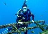 2-day PADI Diving Course in Lanzarote. Lanzarote, ESPAÑA