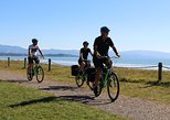 Full-Day Self-Guided Cycle and Sail Adventure from Nelson