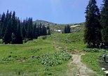 Private Hiking Trip to the Black Peak in Vitosha Mountain