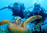 10 fun dive package