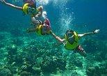 Snorkel trip in Utila