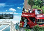 Singapore Flyer and Big Bus Hop-On Hop-Off Tour