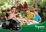 Zoo (Optional Breakfast with Orangutans) and 2-Way Safari Gate City Transfer