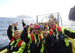 1-Hour Small Group Sightseeing Boat Tour in Vestmannaeyjar