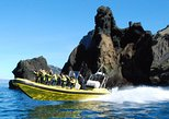 2 hour Round Trip in Vestmannaeyjar on a RIB Boat