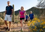 Half-Day Sonoran Desert Hiking Tour