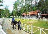 2-Hour Leisure Horse Riding Tour at Bukit Tinggi Berjaya Hills Including Selangor Pewter Tour