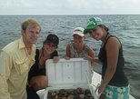 Private Scalloping Charter