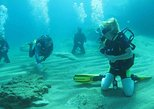Beginners course Discover Scuba Diving