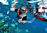 Hon Mun Island Half-Day Snorkeling Guided Tour from Nha Trang