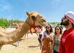 Africa & Mid East - Bahrain: Half-Day Desert Tour