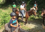 Amber Cove Excursion: Horseback Ride at Rancho Los Cacaos