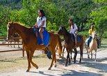 Horseback Riding from Montego Bay