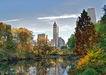 Central Park Private Walking Tour