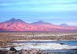 Altiplanic Lagoons, Piedras Rojas and Atacama Salt Flat