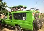4 days Tsavo East, Tsavo west and Amboseli national park tours