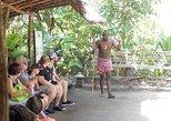 Vanuatu Shore Excursion: Full-Day Efate Island Tour