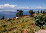 Full Day: Uros and Taquile Island- Puno