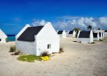 3-Hour Island Sightseeing Tour of Bonaire