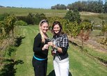 Half-Day Guided Private Wine Tour from Franschhoek