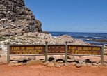 Cape Peninsula Guided Day Tour from Cape Town