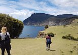 3-Day Walking Holiday: Mount Field Wilderness Walk Tasman Peninsula and Maria Island