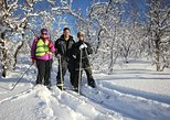 Cross-Country Skiing in Tromso
