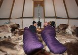Sleep one night in a Sami tent