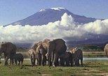 2 Days Amboseli National Park Safari- Guarantee Daily Departure