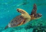 Marmaris Dalyan Turtle Beach Mud Bath & Kings Tombs