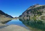 West Coast Glaciers Tour