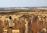 Full-Day Pinnacles Sandboarding and Yanchep National Park from Perth
