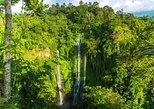 Small-Group Sekumpul Waterfall Jungle Trek with Lunch
