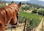 Private Napa Sonoma Wine Tour and Horseback Ride from San Francisco