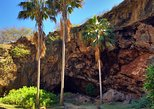 Ancient Kauai Excursions Tour