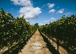 Santa Barbara Wine Country Tour