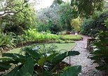 Garden Delight Full-Day Tour in Barbados
