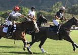 Honolulu Polo Game with Stables Tour and VIP Seats plus Private Island Tour